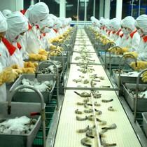 Xuất khẩu thuỷ sản Việt Nam 2017 được dự báo đạt 8 tỷ USD
