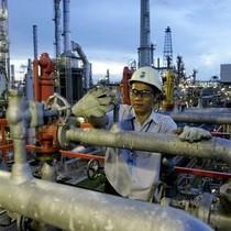 Xuất khẩu xăng dầu tăng 77% trong nửa đầu tháng 8/2017