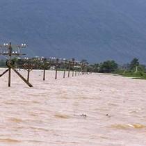 Sáu người chết, nhiều đê đập vỡ do mưa lũ