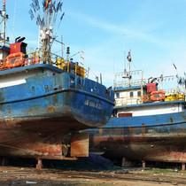 Kỷ luật cả loạt sếp đăng kiểm vụ tàu cá 20 tỷ hư hỏng