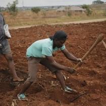 Zimbabwe - nơi 90% dân số thất nghiệp