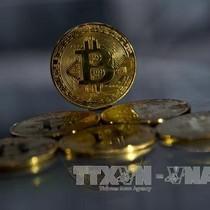 """Các nhà chức trách bắt đầu lo ngại """"cơn sốt"""" bitcoin"""