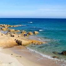 Tập đoàn Hoa Sen sẽ được làm cảng biển ở Cà Ná?