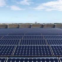Doanh nghiệp Nhật đầu tư gần 1.500 tỷ đồng xây nhà máy điện mặt trời tại Bình Định
