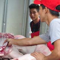 """Trung Quốc thu mua, giá lợn tăng trở lại: """"Không cẩn thận sẽ lại phải giải cứu!"""""""