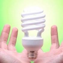 """Bóng đèn Điện Quang: Cổ phiếu bóng đèn """"không còn sáng""""?"""