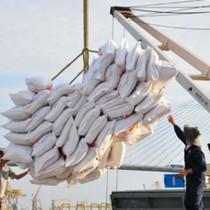 Gạo Việt đặt mục tiêu xuất khẩu mỗi năm thu về 2,5 tỷ USD
