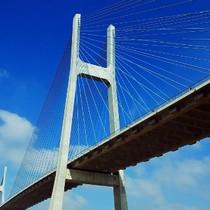 Thanh tra chỉ ra hàng loạt vi phạm tại dự án BOT cầu Phú Mỹ 2.000 tỷ đồng