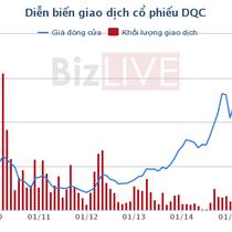 Hé lộ hành trình nâng tỷ lệ sở hữu tại Điện Quang của gia đình bà Hồ Thị Kim Thoa