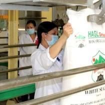 HAGL Agrico lãi hay lỗ trong thương vụ bán HAGL Sugar?