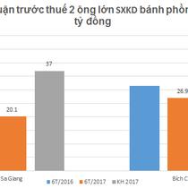 Bích Chi tham vọng đặt chân vào Sa Giang vì hoạt động sản xuất kinh doanh đang sụt giảm?