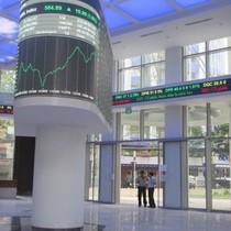 6 tháng HOSE báo lãi 158,6 tỷ đồng, tăng 97% nhờ thu giá dịch vụ giao dịch chứng khoán tăng mạnh