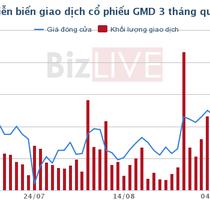 Muốn sở hữu GMD nhưng Tae Kwang đã thất bại, CJ Logistics tham gia cuộc đua