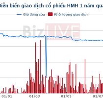 Tiếp vận Hải Minh: Ước lợi nhuận sau thuế 9 tháng đạt 15,7 tỷ đồng