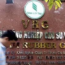 Khởi tố nguyên chủ tịch Tập đoàn Cao su Việt Nam và nhiều cựu lãnh đạo khác