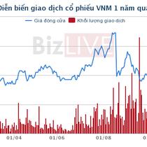 """Sau thương vụ bán cổ phiếu VNM, Việt Nam cần thay đổi """"cơ chế"""" bán phần vốn nhà nước tại doanh nghiệp"""