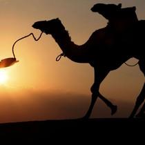 Chiến binh cưỡi lạc đà bắt cóc 40 người ở Niger