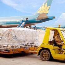 Nội Bài Cargo: Lợi nhuận 9 tháng giảm mạnh vì mảng hàng quốc tế