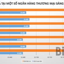 Tỷ giá USD/VND giảm nhẹ
