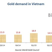 Vietnam Gold Demand Slides 5% y/y to 15 Tons in Q3: World Gold Council