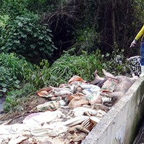 Vietnam Sounds Alarm Bells on Polluting FDI Projects