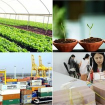 [Round-up] Vietnam Posts $400 Million Trade Deficit in November, Business Formations Hit Record High
