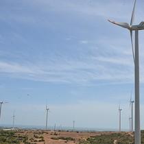 """Doanh nghiệp điện gió vẫn """"đau đáu"""" với giá bán điện"""