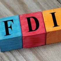 Actual FDI in Vietnam May Reach $118 Billion in Next Decade: Economist