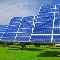 Another Foreign Player Eyes 300 MW Solar Farm in Vietnam