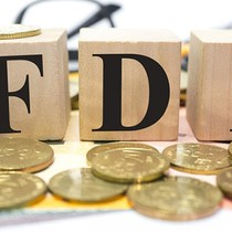 FDI Flows into Vietnam to Stay Robust despite Fed's Rate Hikes: Agency
