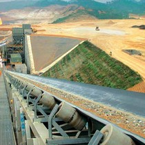 Vietnam's Masan Will not Sell Tungsten Mine: Executive