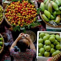 Người tiêu dùng Việt quan tâm yếu tố môi trường, thương hiệu khi mua hàng