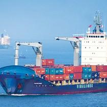 Tính IPO vào cuối năm nay, Vinalines tìm kiếm nhà đầu tư chiến lược tại Singapore