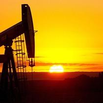 Nguồn cung tăng đẩy giá dầu lao dốc không phanh