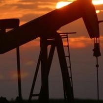 Giá dầu trôi về đáy 7 tháng sau số liệu từ Mỹ