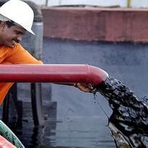 Hoạt động khai thác ở Mỹ có dấu hiệu chững lại, giá dầu tăng nhẹ