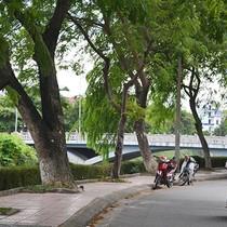 Việt Nam vay ADB 170 triệu USD để xây dựng cơ sở hạ tầng đô thị xanh