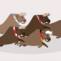 13 thị trường chứng khoán thế giới đang tăng điểm