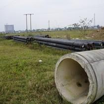 Dự án tái định cư 300 tỷ ở Thanh Hóa thành nơi chăn bò, chích ma túy