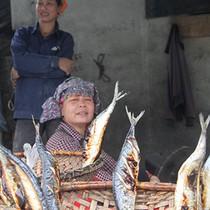 Nghề nướng cá thu tiền triệu mỗi ngày ở Hà Tĩnh