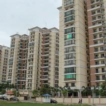 Khan hiếm căn hộ dưới 20 triệu đồng/m2