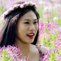 [Video] Trồng hoa cho khách selfie kiếm tiền triệu mỗi ngày