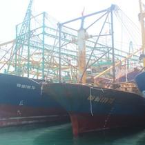 """<span class='bizdaily'>BizDAILY</span> : Hàng chục tàu cá vỏ thép """"đắp chiếu"""" vì dùng thép... Trung Quốc"""