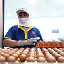 Ba Huân: Lấy trứng chọi... trứng