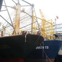 Tàu cá vỏ thép bị hư hỏng hàng loạt: Kiện ra tòa, chứ ngư dân khổ quá rồi!