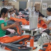 Không nên can thiệp hành chính vào thị trường lao động