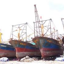 25 chủ tàu vỏ thép phải chịu nợ quá hạn