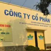 FLC, HAI dẫn đầu thanh khoản thị trường