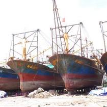 Công ty đóng tàu vỏ thép đòi kiện Bộ Nông nghiệp và chủ tàu