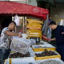 Mỗi đêm Triều Tiên tuồn vào Trung Quốc hàng tấn...hải sản
